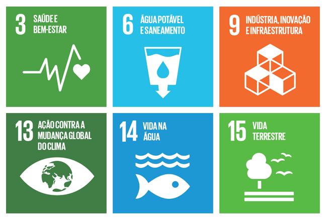 Objetivos de Desenvolvimento Sustentável - ONU