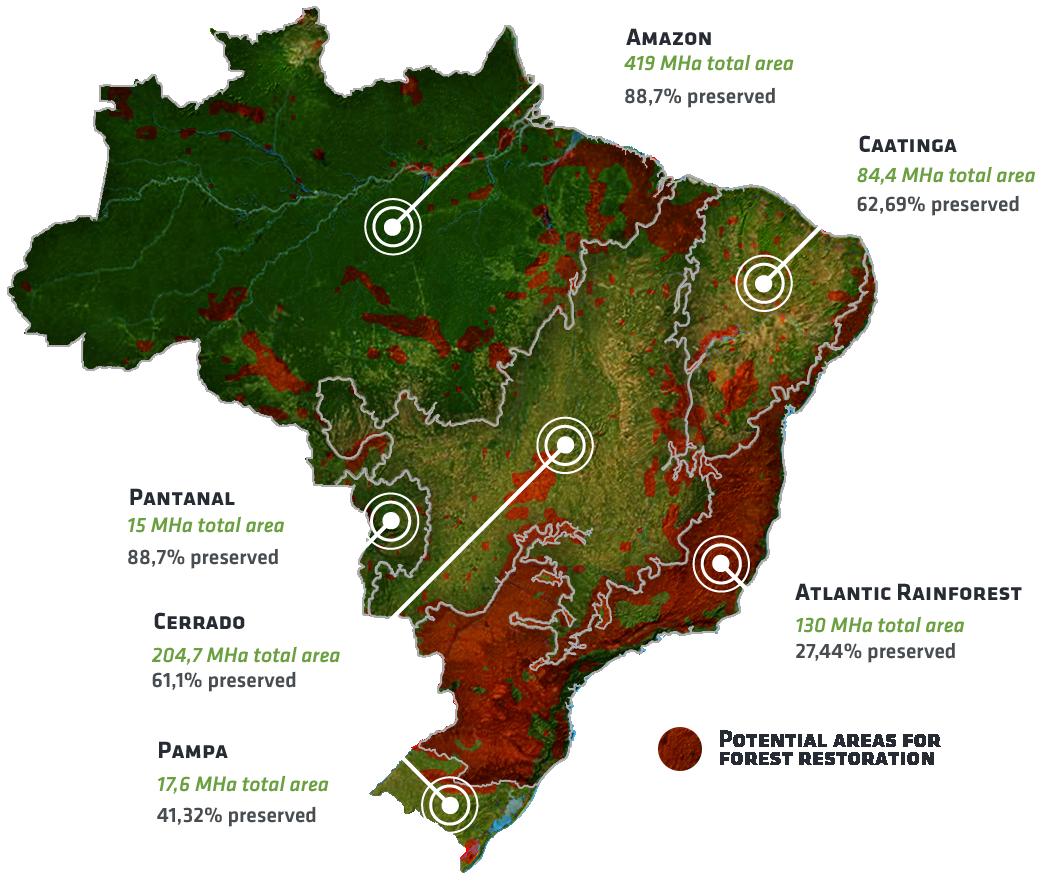 Nucleario biomes brazil