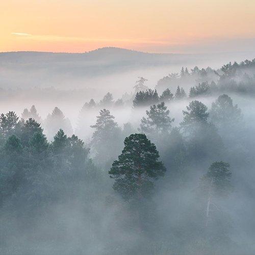 Natureza regulação de clima climate changes
