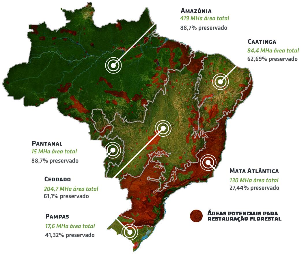 biomas brasil Nucleário